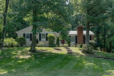 Berkeley Heights Single Family Home For Sale: 240 Lorraine Dr
