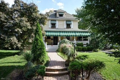 Westfield Town Single Family Home For Sale: 650 Raymond St