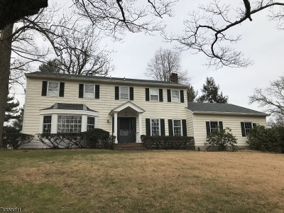 Montgomery Twp. Single Family Home For Sale: 566 River Rd