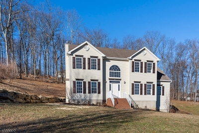 Mount Olive Twp. Single Family Home For Sale: 53 Indian Spring Rd