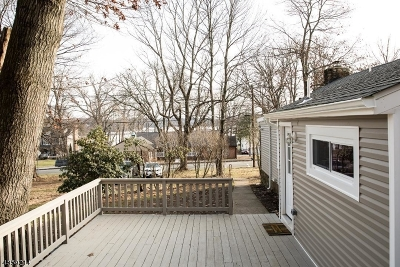 Stanhope Boro Single Family Home For Sale: 36 Musconetcong Ave