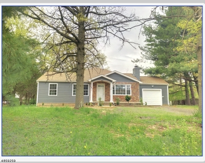 Branchburg Twp. Single Family Home For Sale: 2018 S Branch Rd