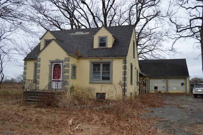 Readington Twp. Single Family Home For Sale: 755 Route 202