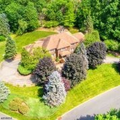 Franklin Lakes Boro Single Family Home For Sale: 730 Galloping Hill Rd