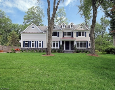 Chatham Twp. Single Family Home For Sale: 111 Long View Ave