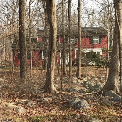 Boonton Twp. Single Family Home For Sale: 20 Meadowbrook Rd