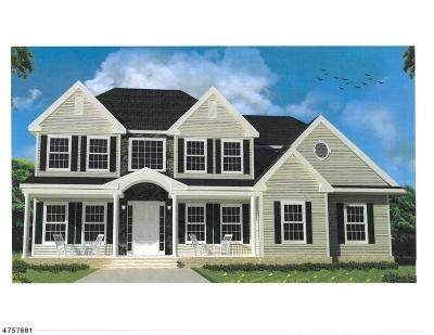 Alexandria Twp. Single Family Home For Sale: 10 Amelia Way