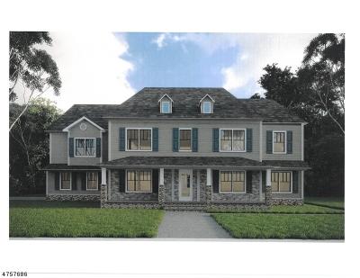 Alexandria Twp., Frenchtown Boro Single Family Home For Sale: Cirrus Lane