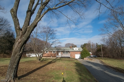 Mount Olive Twp. Single Family Home For Sale: 125 Flanders Drakestown Rd