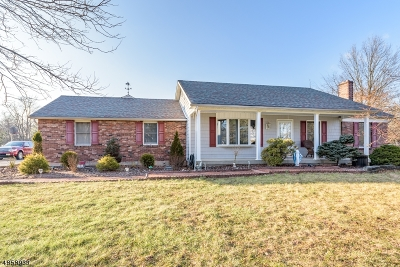 Hillsborough Twp. Single Family Home For Sale: 99 S Triangle Rd #3