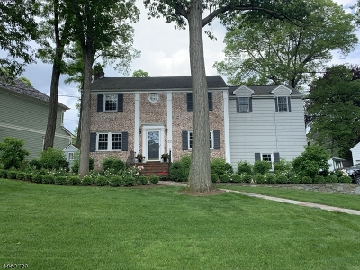 Westfield Town Single Family Home For Sale: 410 Topping Hill Rd