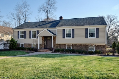 WestField Single Family Home For Sale: 16 Burgess Ct