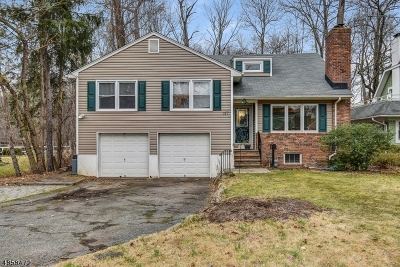 Florham Park Boro Single Family Home For Sale: 117 Roosevelt Blvd