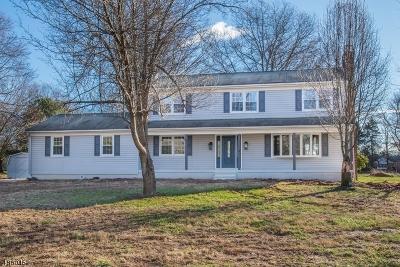 Whitehouse Station Single Family Home For Sale: 4 Horseshoe Rd