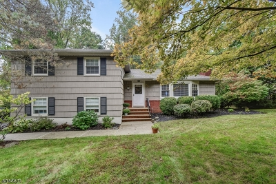 Berkeley Heights Single Family Home For Sale: 705 Glenside Ave