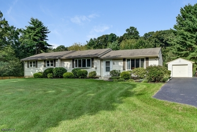 Clinton Twp. Single Family Home For Sale: 27 Potterstown Rd
