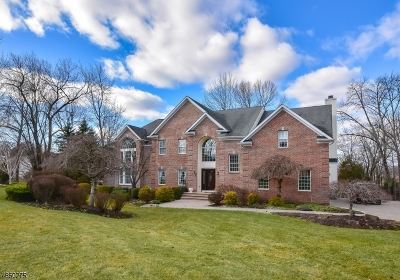Montville Twp. Single Family Home For Sale: 6 Van Duyne Ct