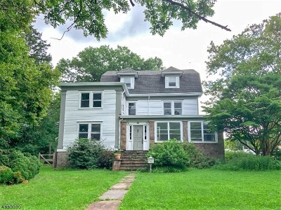Flemington Boro Single Family Home For Sale: 82 Broad St