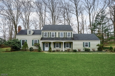 Morristown Town, Morris Twp. Single Family Home For Sale: 4 Stonehenge Rd
