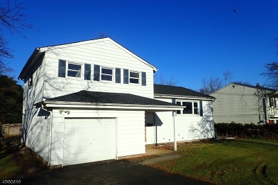 Franklin Twp. Single Family Home For Sale: 20 Woodlawn Rd