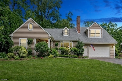 Mountainside Boro Single Family Home For Sale: 254 Hickory Ln