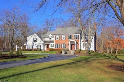 Bernards Twp., Bernardsville Boro Single Family Home For Sale: 50 Liberty Corner Rd