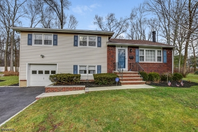 Florham Park Boro Single Family Home For Sale: 8 Kenneth Ct