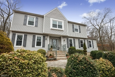 Randolph Twp. Single Family Home For Sale: 24 Park Ave
