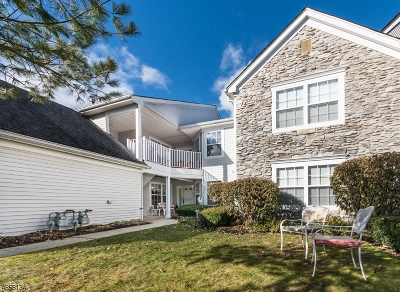Roxbury Twp. Condo/Townhouse For Sale: 34 Lagoon Way #34