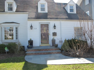 Westfield Town Single Family Home For Sale: 527 N Chestnut St