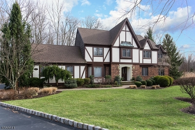 Warren Twp. Single Family Home For Sale: 15 Canterbury Ct