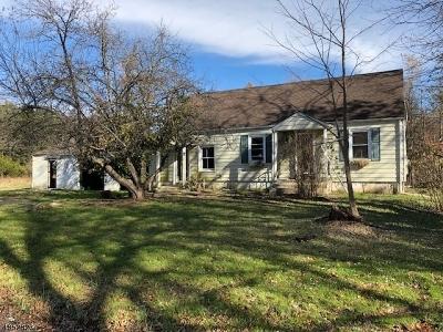 Raritan Twp. Single Family Home For Sale: 71 Decker Rd