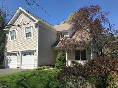 Readington Twp. Single Family Home For Sale: 9 Captains Woods Rd