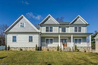 Mountainside Boro Single Family Home For Sale: 1024 Mary Allen Ln