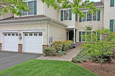 Tewksbury Twp. Condo/Townhouse For Sale: 1602 Farley Rd