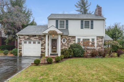 Summit Single Family Home For Sale: 259 Ashland Rd