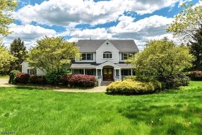 Hunterdon County Single Family Home For Sale: 8 Apple Ln