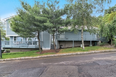 Clifton City Condo/Townhouse For Sale: 38 Skyview Ter #38