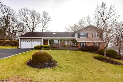 Wayne Twp. Single Family Home For Sale: 93 Tall Oaks Dr