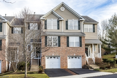 Montgomery Twp. Condo/Townhouse For Sale: 19 Jackson Ave