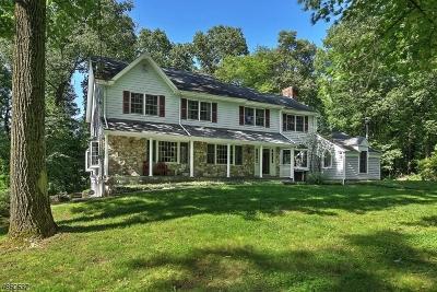 Bernardsville Boro Single Family Home For Sale: 17 Crest Dr