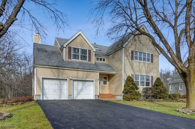Hillsborough Twp. Single Family Home For Sale: 5 Gulick Court