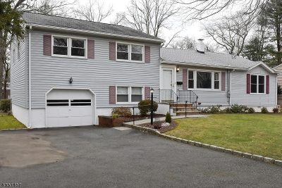 Florham Park Boro Single Family Home For Sale: 77 Edgewood Dr