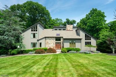 Warren Twp. Single Family Home For Sale: 11 Horseshoe Rd
