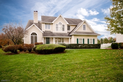 Montgomery Twp. Single Family Home For Sale: 10 Spyglass Rd