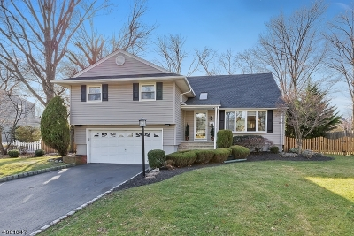 Westfield Town NJ Single Family Home For Sale: $719,000