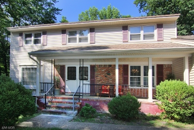 Berkeley Heights Single Family Home For Sale: 91 Webster Dr #1