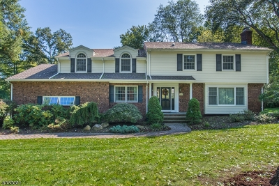 Wyckoff Twp. Single Family Home For Sale: 720 Birchwood Dr