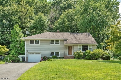 Morris Twp. Rental For Rent: 33 Terry Dr