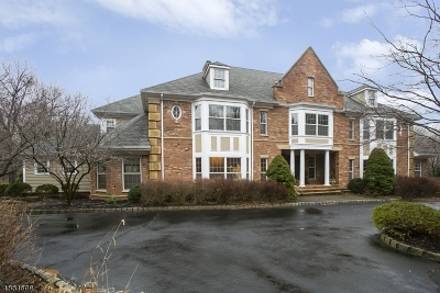 Mendham Boro, Mendham Twp. Single Family Home For Sale: 6 Ascot Ln